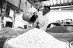 节约粮食 掀起可持续生产消费新风尚